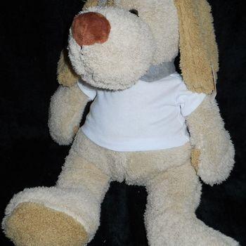 hond 45cm + t-shirt met kraagje