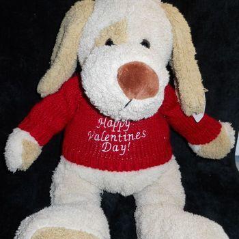 valentijn t-shirt voor grote knuffels